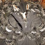 Одилия (Черный лебедь) балет Лебединое озеро