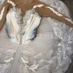 Балетная пачка Лебедь из балета Лебединое озеро (Ballet tutu Swan from the ballet Swan Lake)