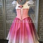 Костюм Лиза из балета Тщетная предостороженность (Lisa's costume from the ballet A Futile Precaution)